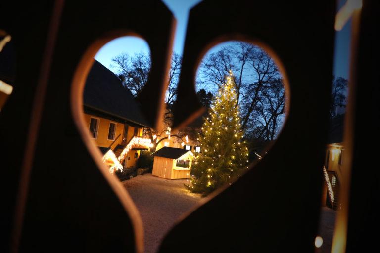 Winter am Murhof